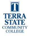 Terra smaller logo 2